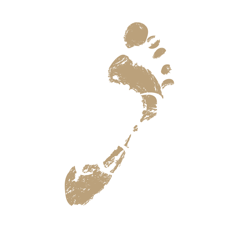 Logo Living Stone White 2